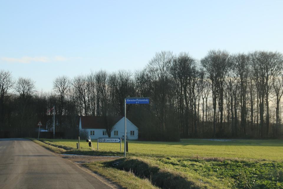 По пути к руинам Бьорнкэр, Gersdorfslundvej. Фото 31 янв. 2021