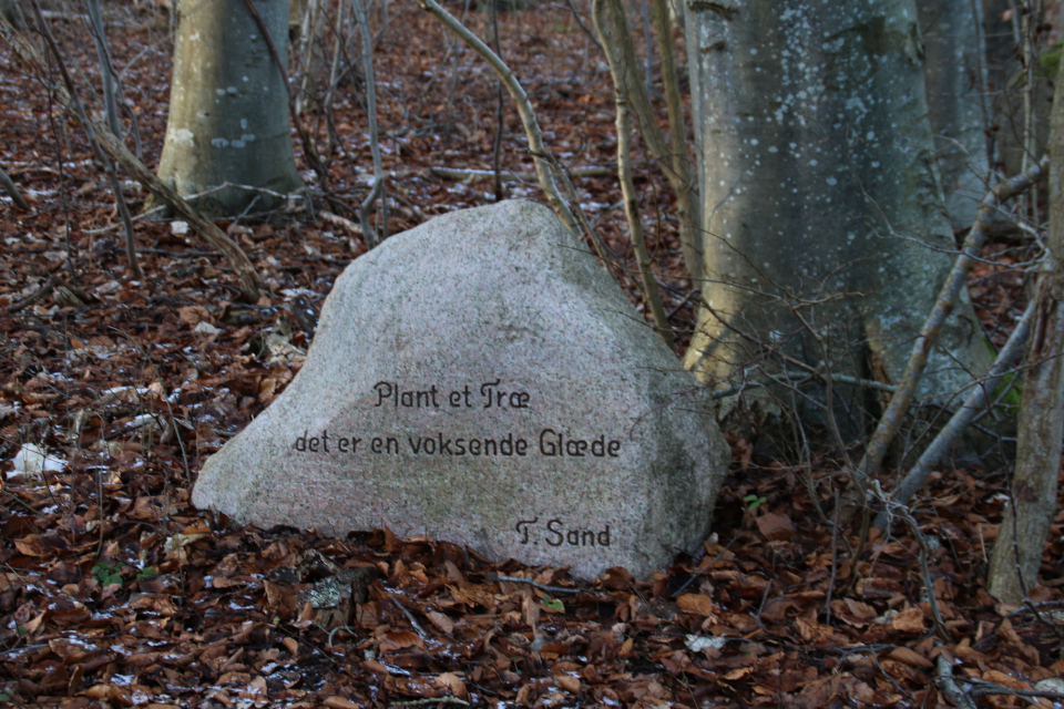 Памятный камень. Руины Бьорнкэр. Фото 31 янв. 2021
