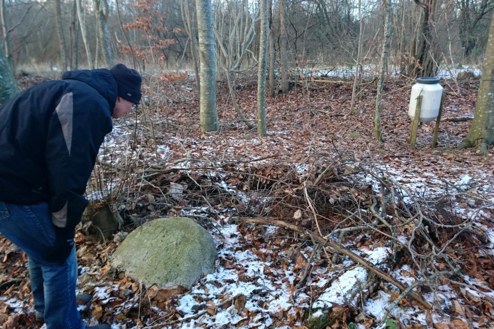 Кормушка для фазанов и камень-указатель направления к руинам Бьорнкэр