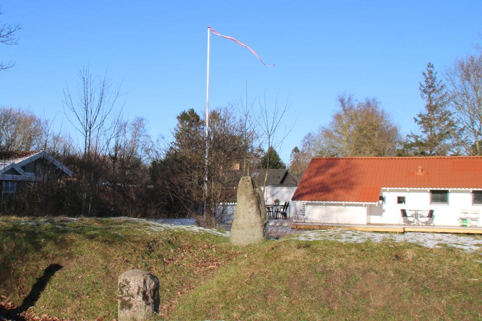 Длинный курган Рудэ Rude langhøj. Дания 31 янв. 2021