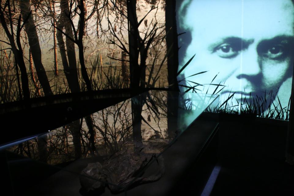Йенс Якоб Асмуссен Ворсо, музей Вайле. Фото 12 нояб. 2020