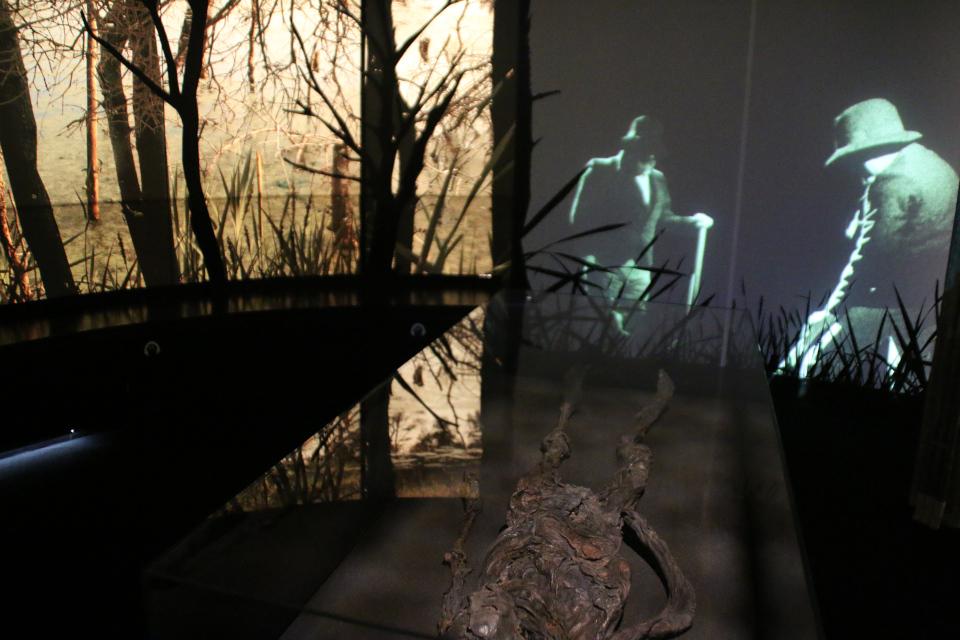 Женщина из Харальдскера, болотная мумия. Фото 12 нояб. 2020