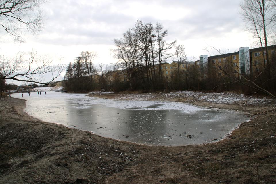 Дождевое озеро Риссков, Орхус, Дания 7 фев. 2021