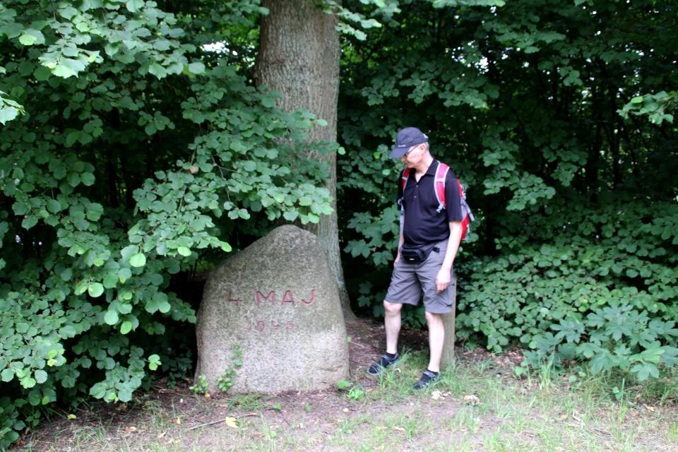 Памятный камень на холме с курганом Хобьерг, Биркерёд (Høbjerg, Birkerød). Фото 10 июл. 2021