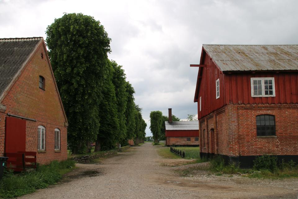 Подсобные и жилые дома усадьбы Граубалле. Фото 7 июн. 2020, Дания