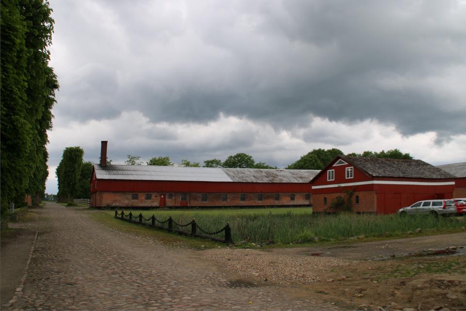Дорога с брусчаткой возле пруда в усадьбы Граубалле. Фото 7 июн. 2020, Дания