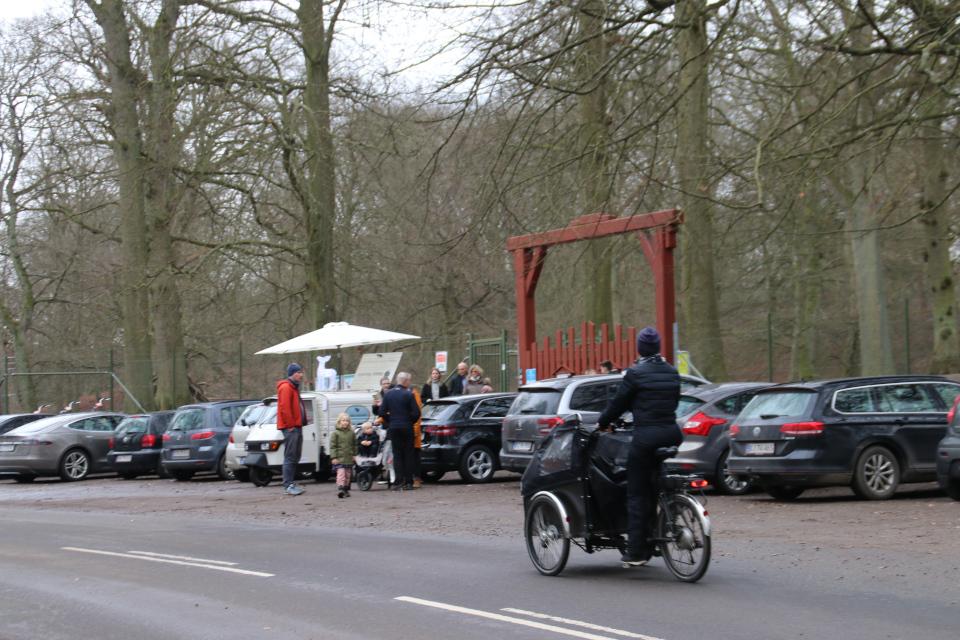 Минимобиль - кофейня в Дании около парка животных