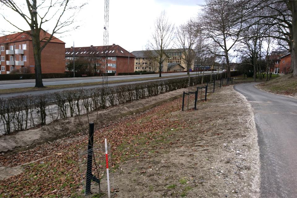 Сбор дождевой воды. г. Орхус, Дания. 7 мар. 2021