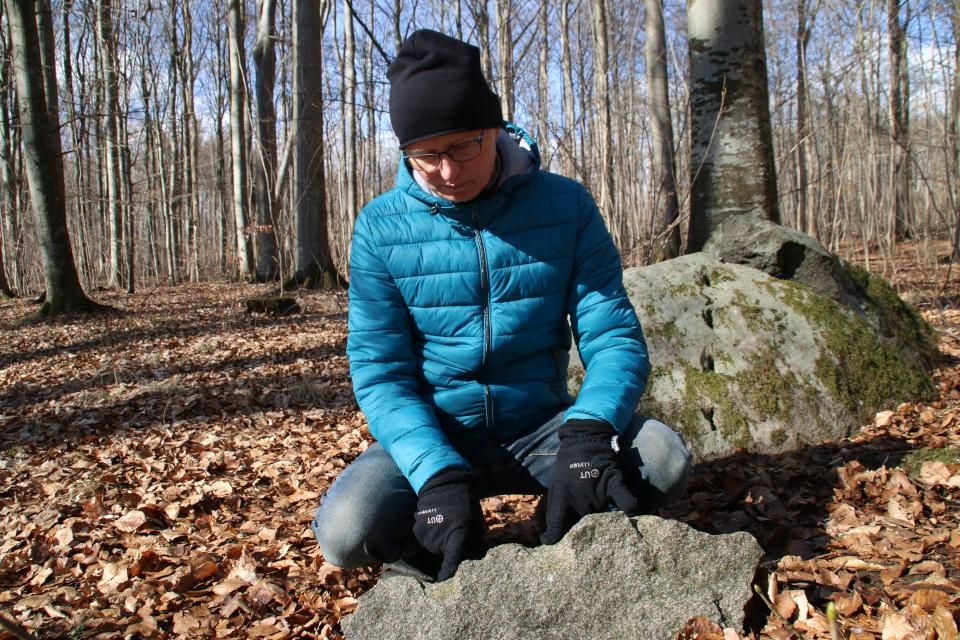 Следы клиньев на расколотом камне в лесу Хёррет, г. Морслет, Дания