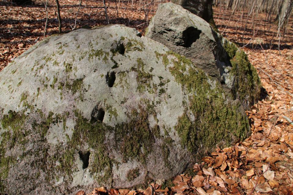 Валун с клиновидными отверстиями с лесу Хёррет, г. Морслет, Дания
