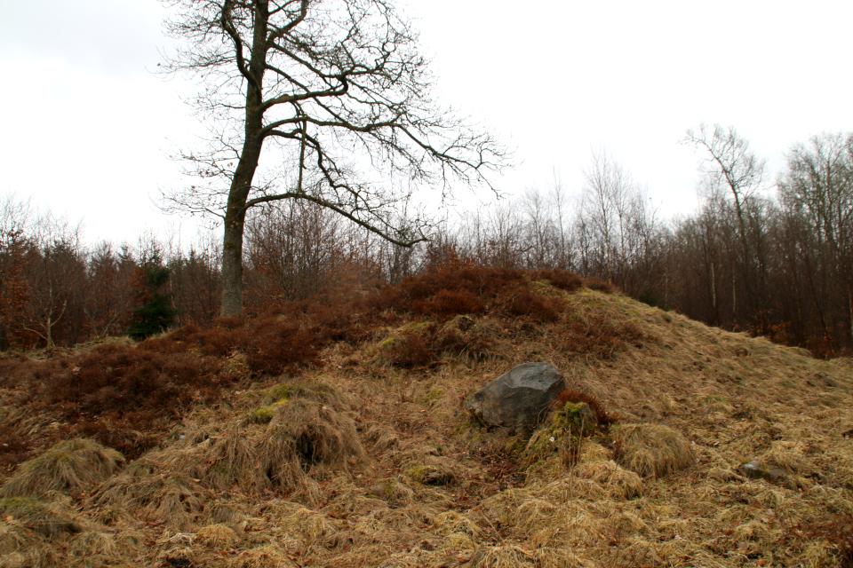 Колотый камень в лесу у подножья кургана. Фото 28 мар. 2021, Триндеруп, Дания