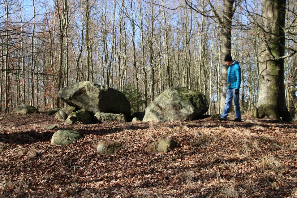 Коридорная гробница Равнсков. 9 мар. 2021, Оддер, Дания