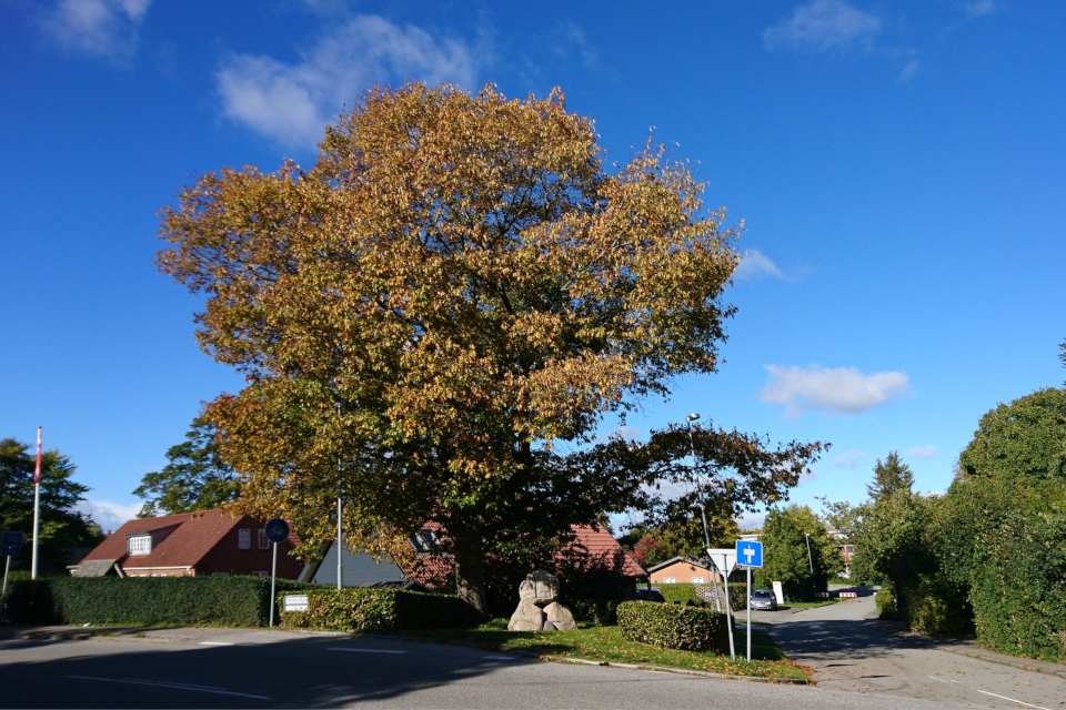 Памятник освобождения Дании, Холме (Holme). Фото 1 окт. 2018