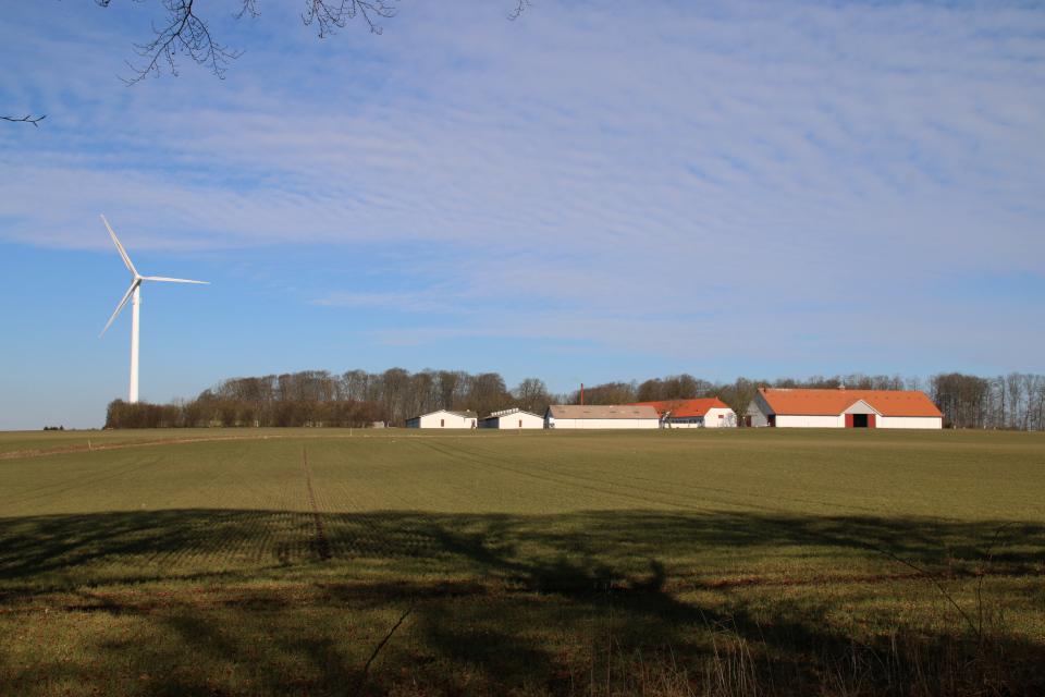 Вид на ветряную мельницу с земляного вала леса
