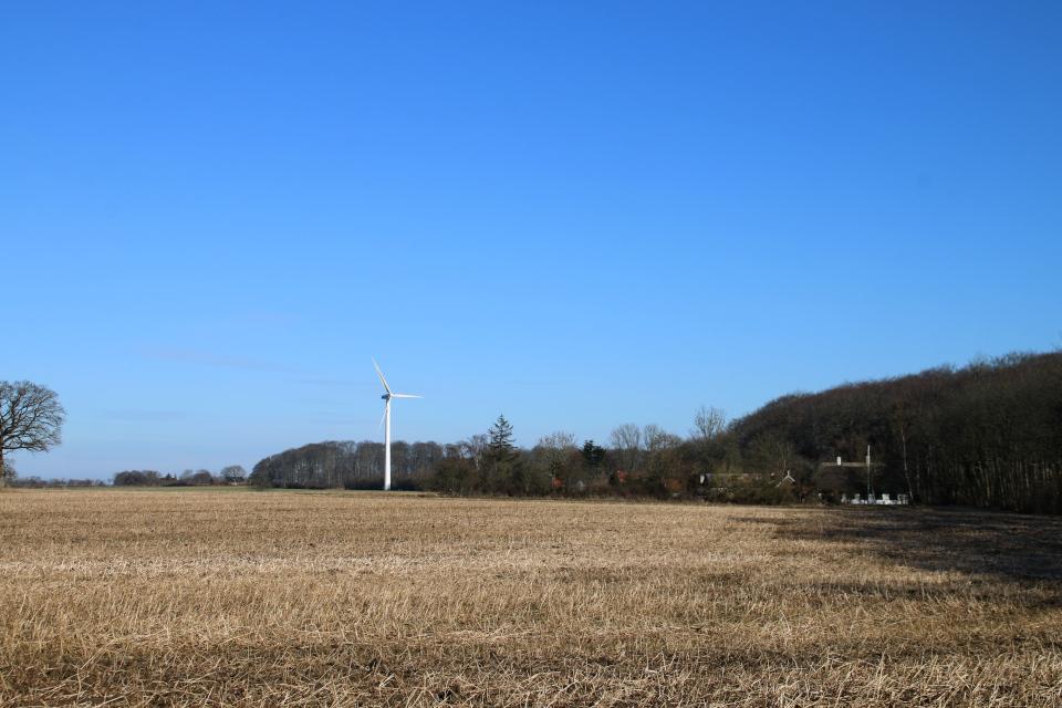 Вид на ветряную мельницу. Фото 9 мар. 2021, г. Оддер, Дания