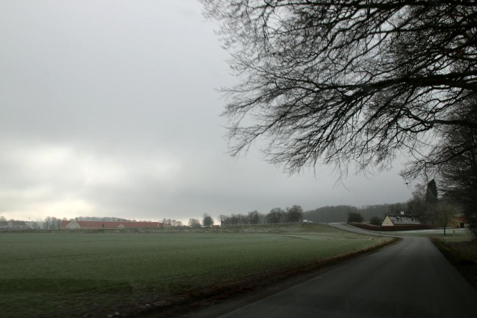Вид с дороги на поместье Окэр. Фото 1 фев. 2021, г. Оддер, Дания