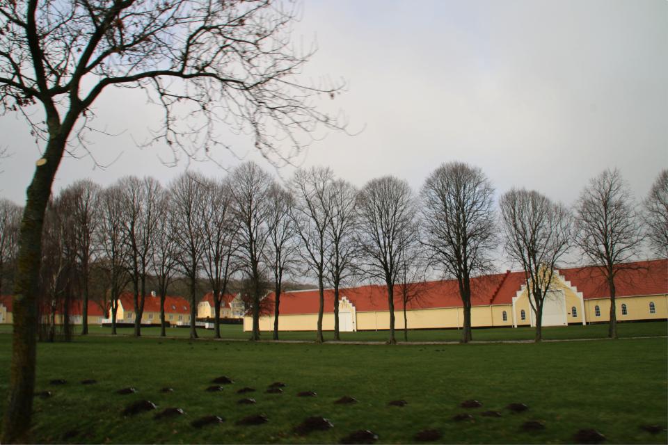 Вид с дороги на аллею, ведущую к главному зданию