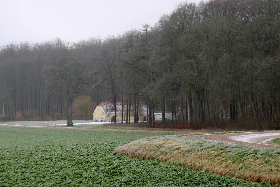 Домик на опушке леса. Фото 1 фев. 2021, поместье Окэр