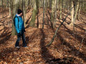 Террасные поля в лесу Торсков