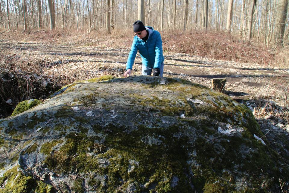 Чашечный камень Фенстен в лесу Fensten Sønderskov