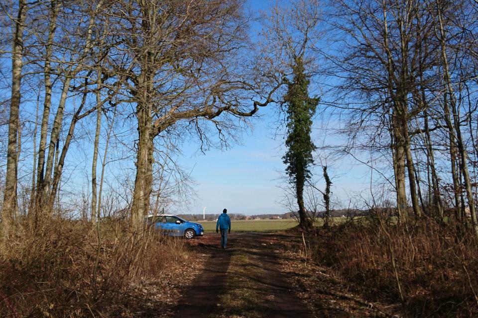 Парковка возле дороги в частной лесу. Fensten Sønderskov. Фото 9 мар. 2021