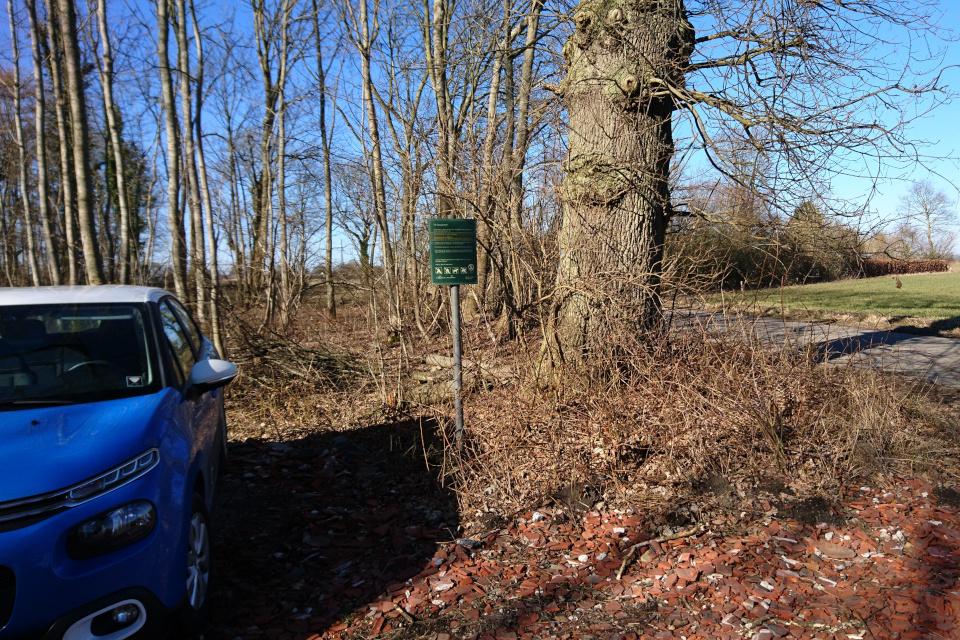 Парковка возле дороги в частной лесу Fensten Sønderskov. Фото 9 мар. 2021