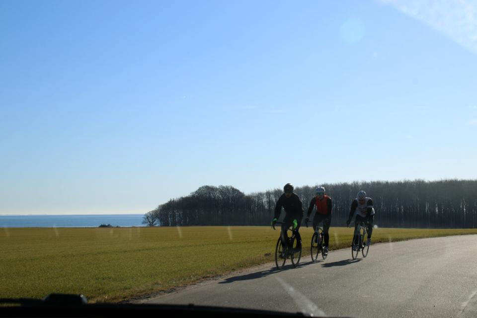 Велосипедисты на дороге с видом на море. Фото 9 мар. 2021