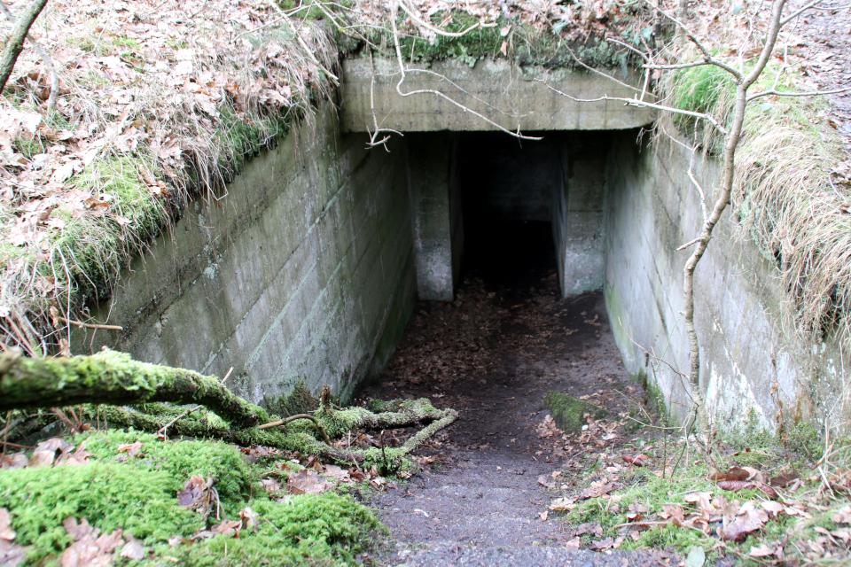 Лестница в подземный бункер летного поля Рю, Дания