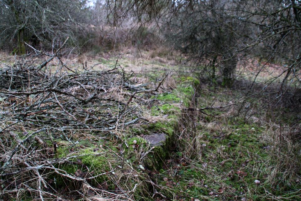 Бетонный фундамент возле бункера летного поля Рю, Дания