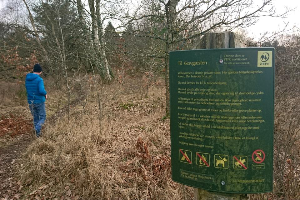 Тропинка к бункеру в частном лесу, Гл. Рю, Дания