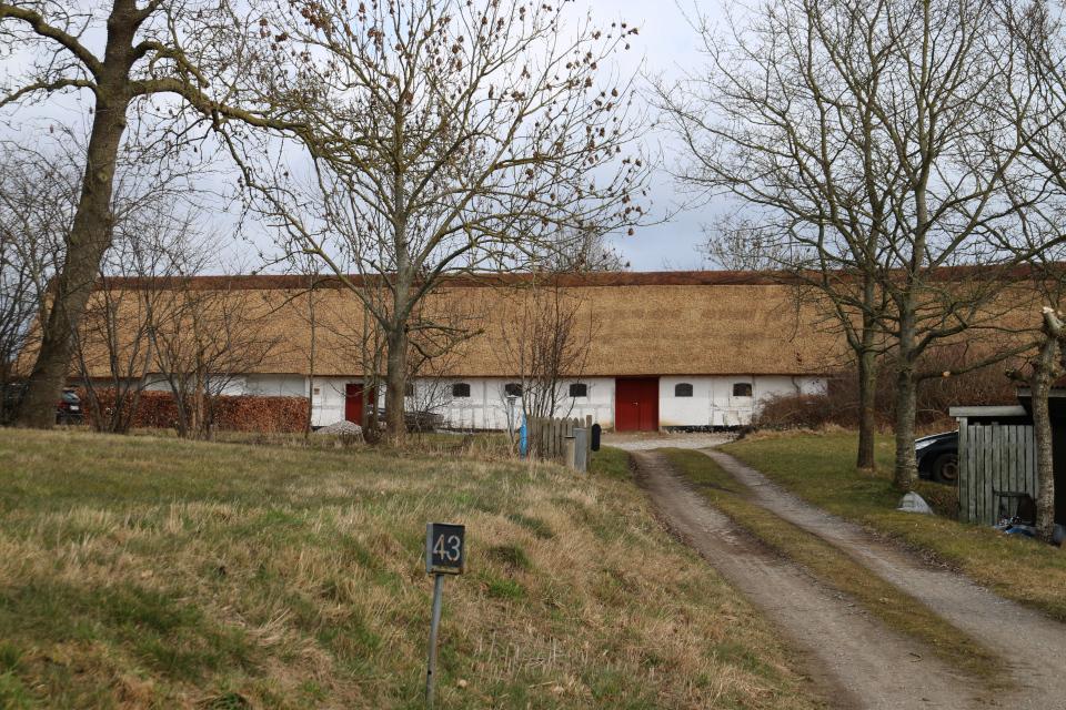 Соломенная крыша. Ольструп / Ålstrup, Дания. 14 мар. 2021