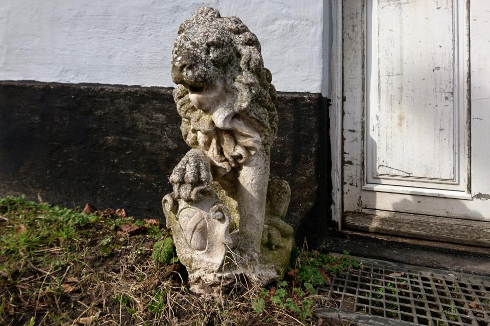 Лев. Ольструп / Ålstrup, Дания. 14 мар. 2021
