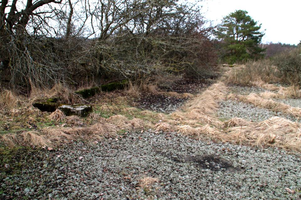 Бетонные плиты и руины летного поля Рю, Дания