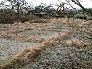 Руины летного поля Рю