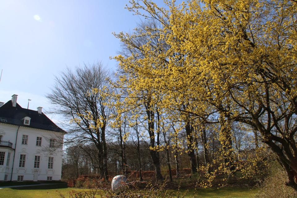 Королевский дворец Марселиборг и суперъяйцо Пит Хейна