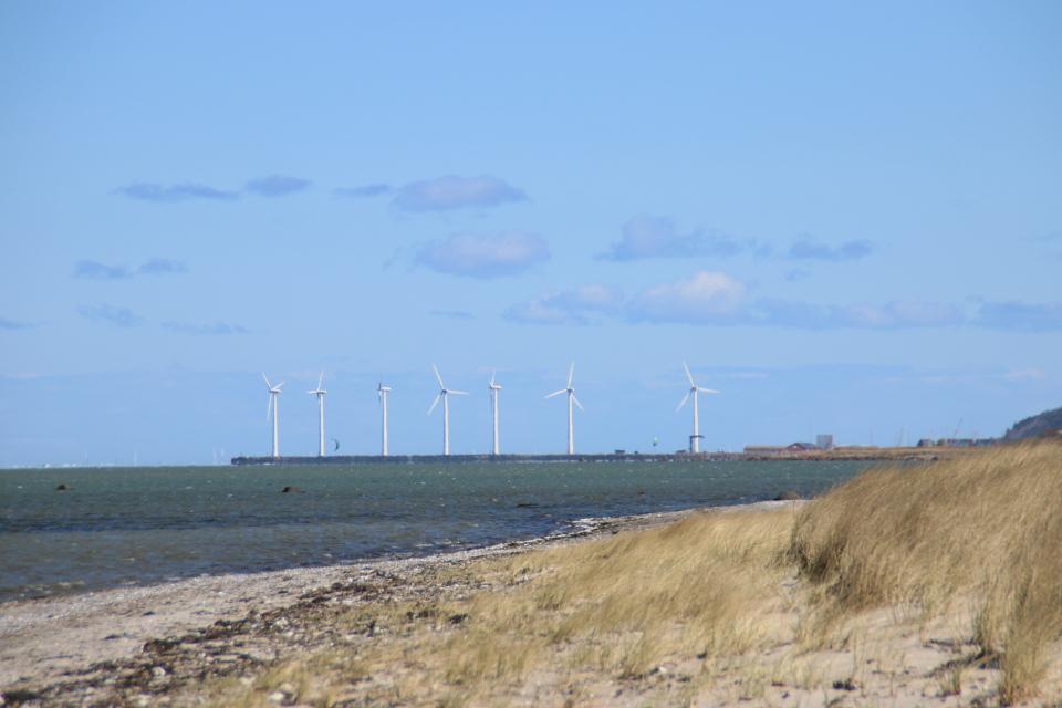 Ветряные мельницы, Бённеруп, Дания. 25 апр. 2021
