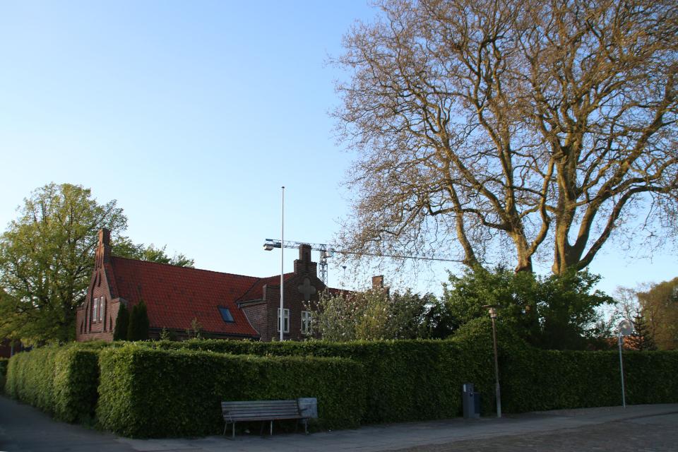 Сад возле дома священника за зеленой оградой из стриженного бука. Фото 20 мая 2021, г. Вибю (Орхус), Дания