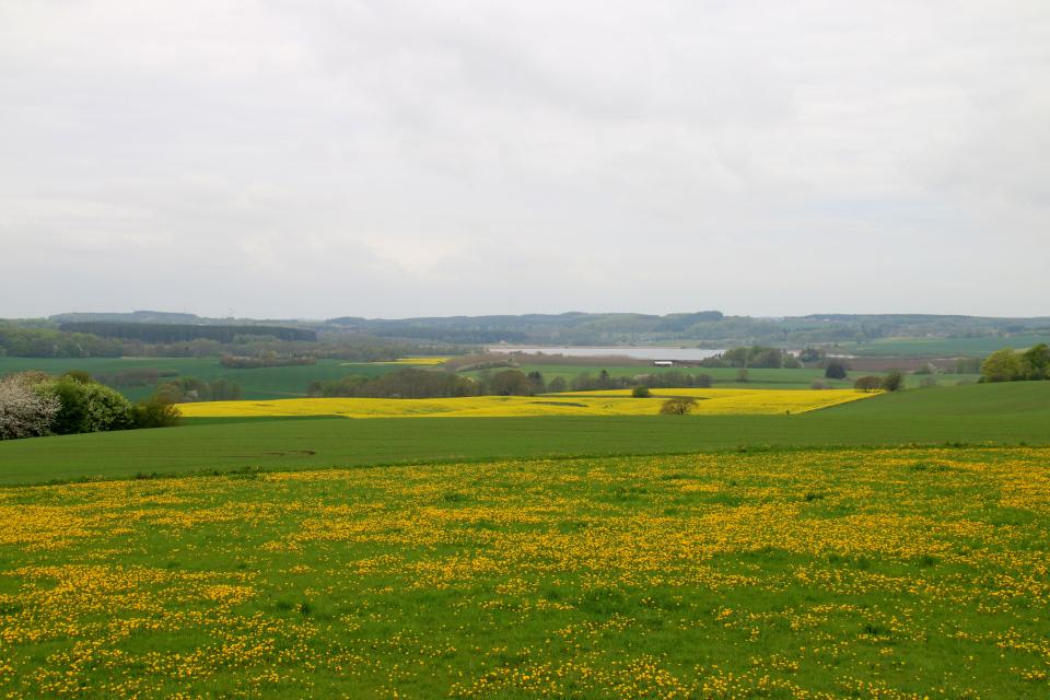 Вид на долину и озеро Ладинг с одного из кургана Борум Эсхой, Сабро, Дания. Фото 13 мая 2021