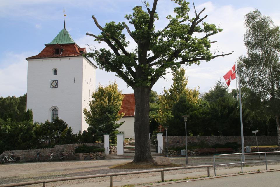 Церковь Вибю и памятный дуб. Фото 22 авг. 2020, г. Вибю (Орхус), Дания