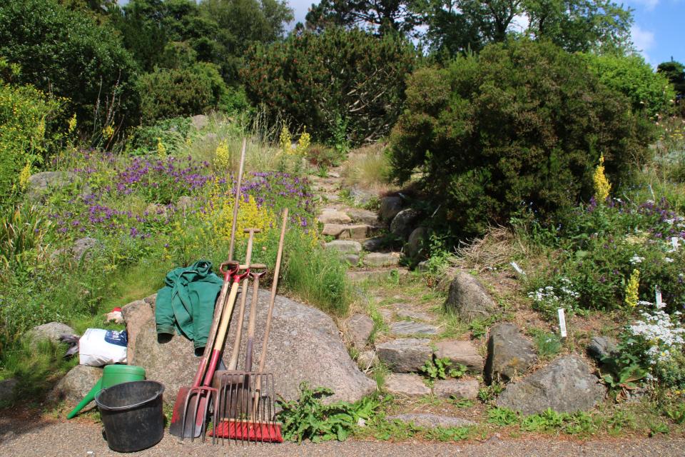 Садовые инструменты Поуль Эрика. в ботаническом саду г. Орхус, Дания. Фото 23 июня 2021
