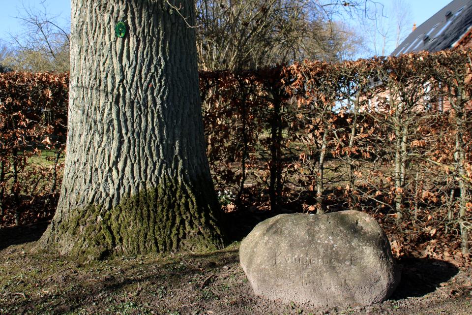 Памятный камень возле дуба женщин. Фото 9 мар. 2021, г. Рандлев, Дания