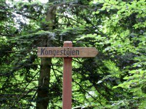 Конгестолен в лесу Силькеборга