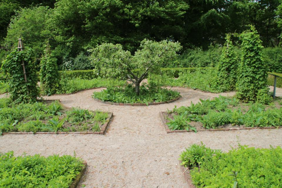 Клумбы геометрических форм в монастырском саду Асмильд. Фото 2 июн. 2021, г. Виборг, Дания