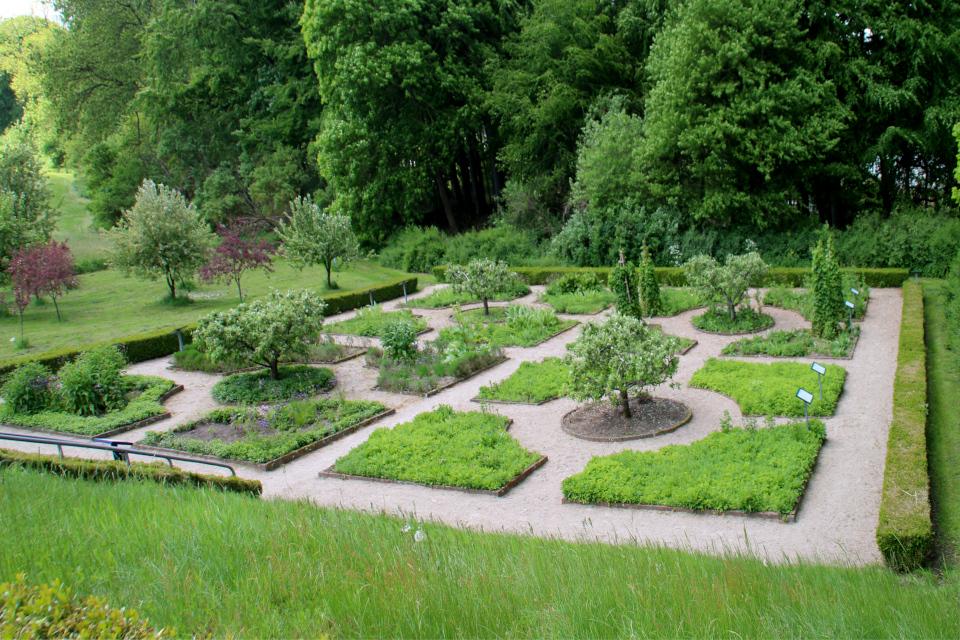 Монастырский сад с клумбами для лекарственных растений и яблоневый сад Асмильд. Фото 2 июн. 2021, г. Виборг, Дания