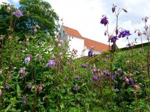 Монастырский сад Асмильд