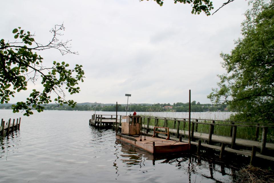 Озеро Борре, Borre Sø, Дания. 11 июн. 2021