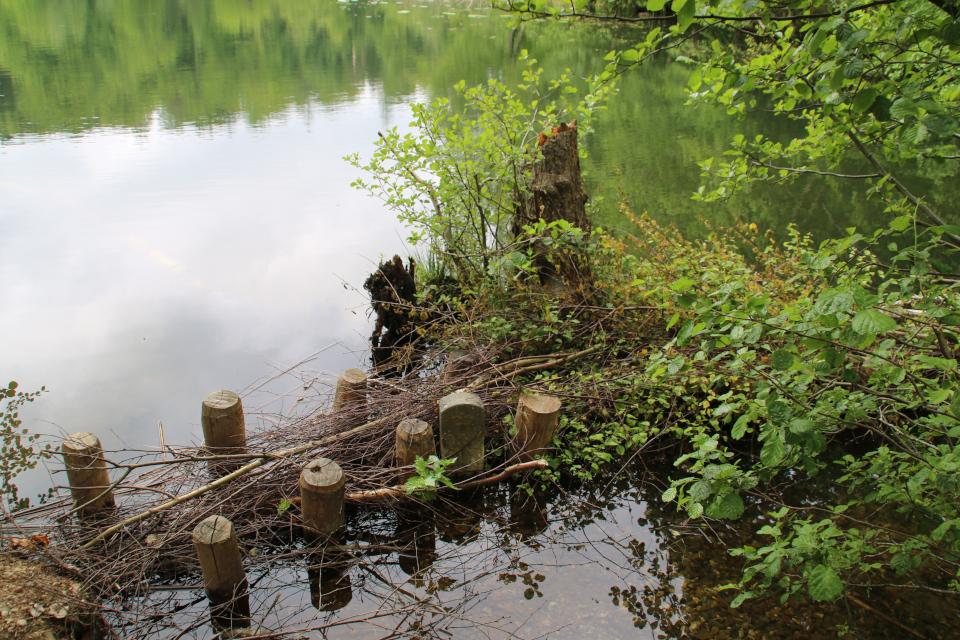Маркировочный камень Skelsten. Озеро Слоэнсё, Slåensø, Силькеборг, Дания. Фото 11 июн. 2021