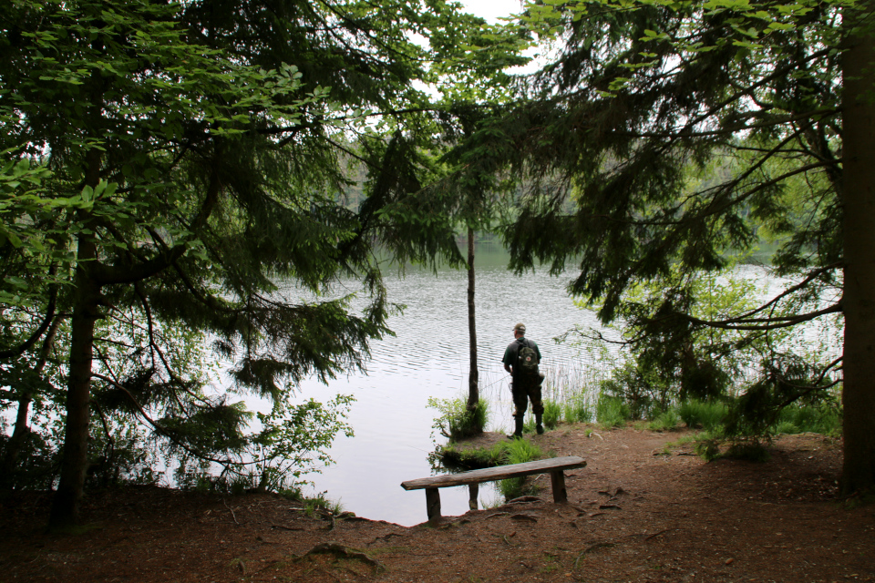 Рыбалка. Озеро Слоэнсё, Slåensø, Силькеборг, Дания. Фото 11 июн. 2021