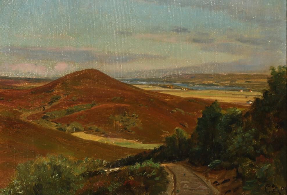 """картина, нарисованная возле озера Борре в 1909 году датским художником-пейзажистом Петром М. К. Сако (дат. Peter Mørch Christian Zacho; 1843 - 1913), которая называется """"Вересковые пустоши Стоубьерг возле Свайбэк"""" (""""Stoubjerg Hede ved Svejbæk"""")"""