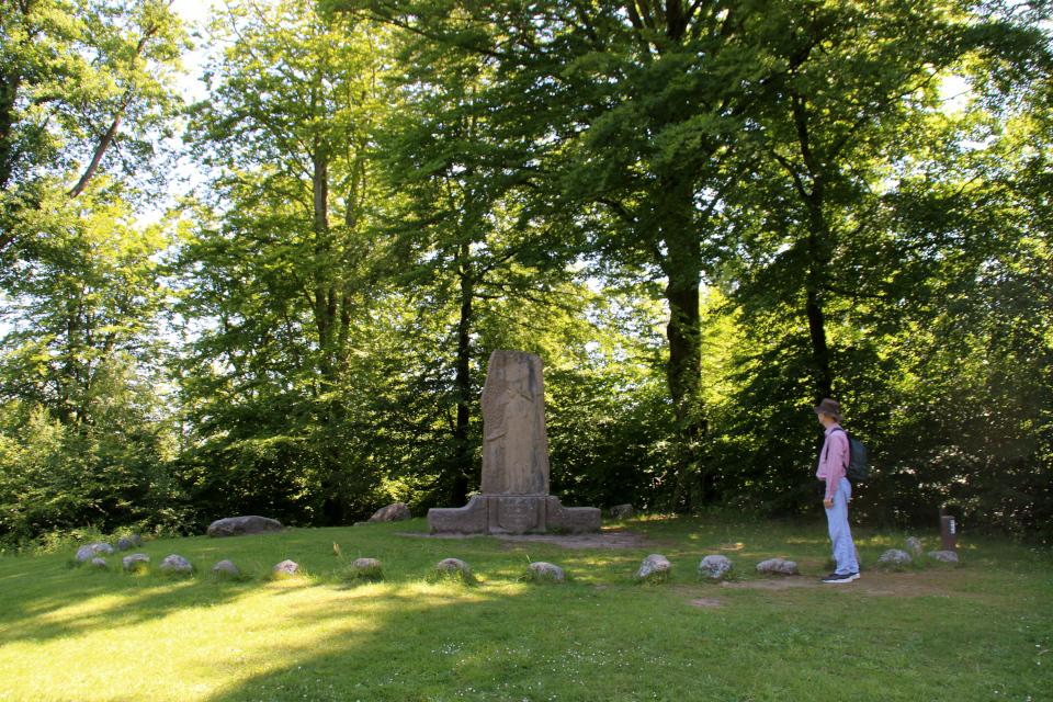 Памятник женщинам возле дуба на холмах Химмельбьерг, г. Рю, Дания. Фото 16 июн. 2021